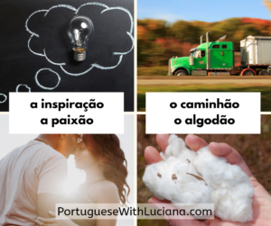 grammatical gender brazilian portuguese